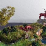 diorama naturalistico Parco Nazionale della Sila